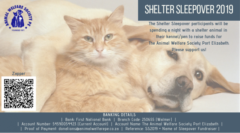 2019 Animal Welfare Society Port Elizabeth Shelter Sleepover