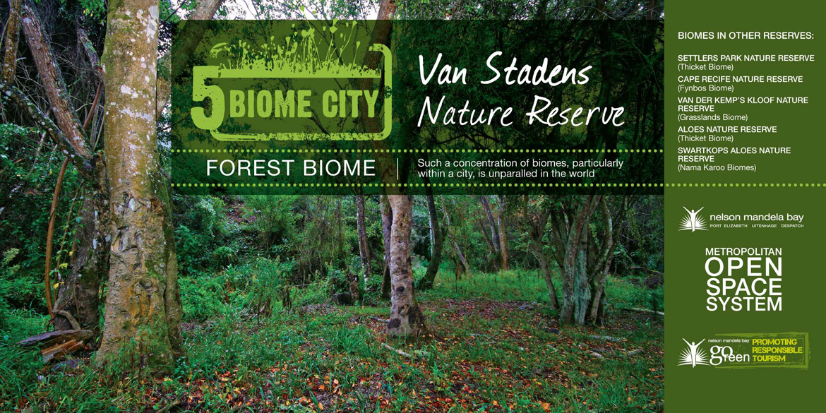 Forest Biome Port Elizabeth