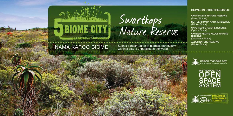 Nama Karoo Biome Port Elizabeth