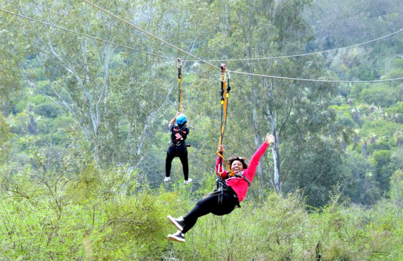 Swinging in port elizabeth photos 251