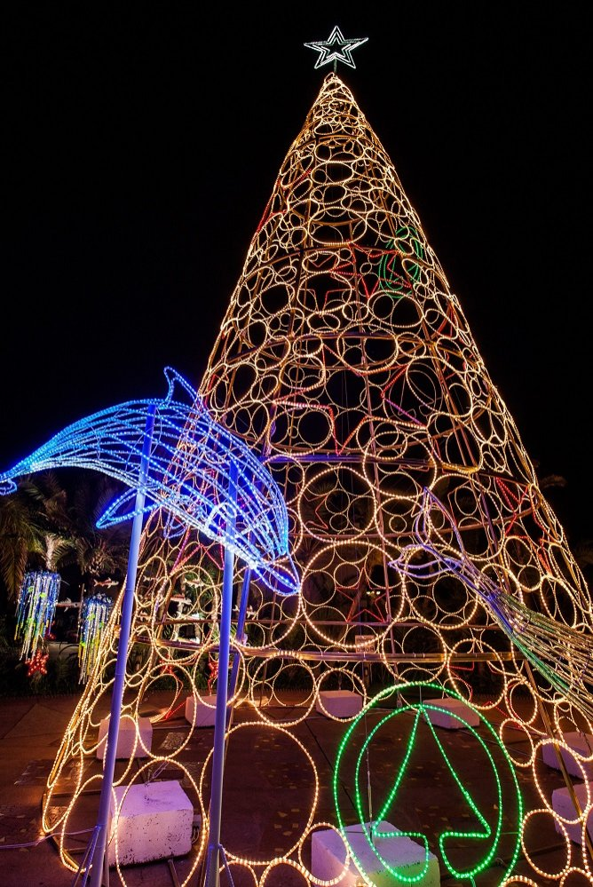 Giant Christmas tree to light up PE's beachfront