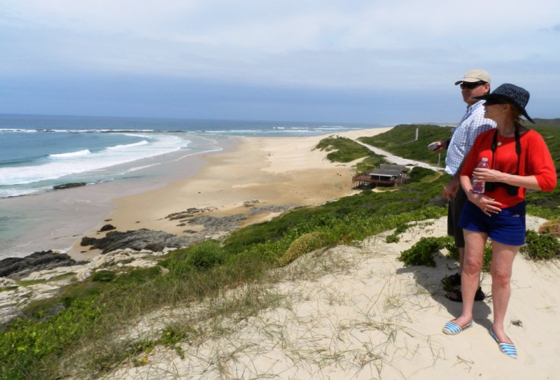Guided walk through the Golden Sands of Southern Seashore