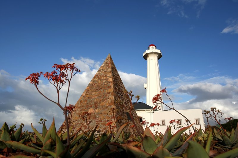 Half Day Port Elizabeth Guided City Tour