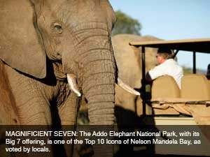 Seventh Heaven at Addo Elephant National Park