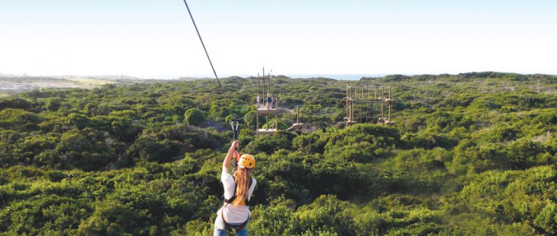 Zipline and High Ropes Experience
